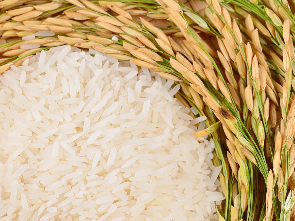 Zakat Hasil Pertanian Dan Aspek Ekonomi