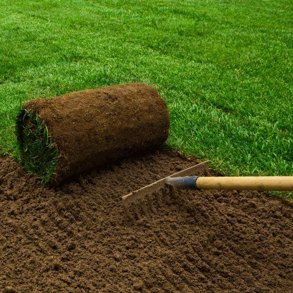 Cara Menanam Lempeng Rumput