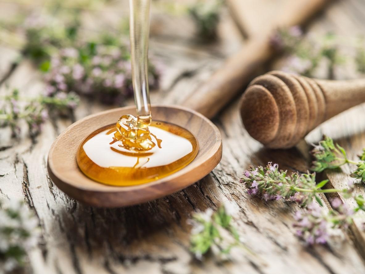 cara mengecek madu asli