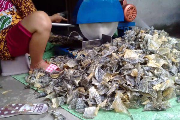 cara membuat kerupuk ikan khas indramayu