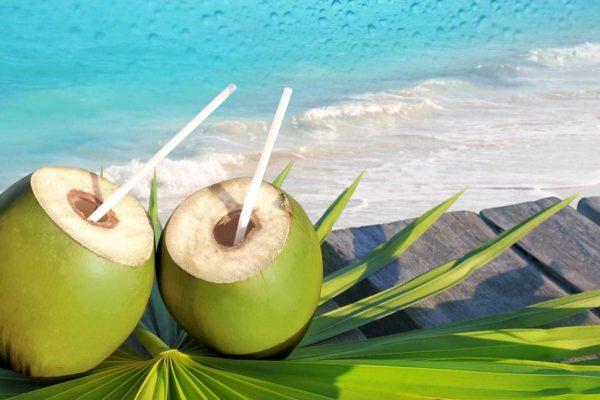 aneka makanan dari kelapa muda