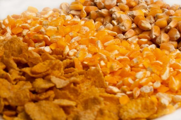 cara membuat emping jagung renyah