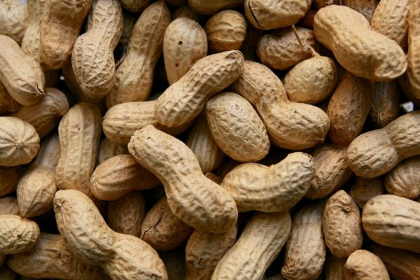 olahan nikmat dari kacang tanah