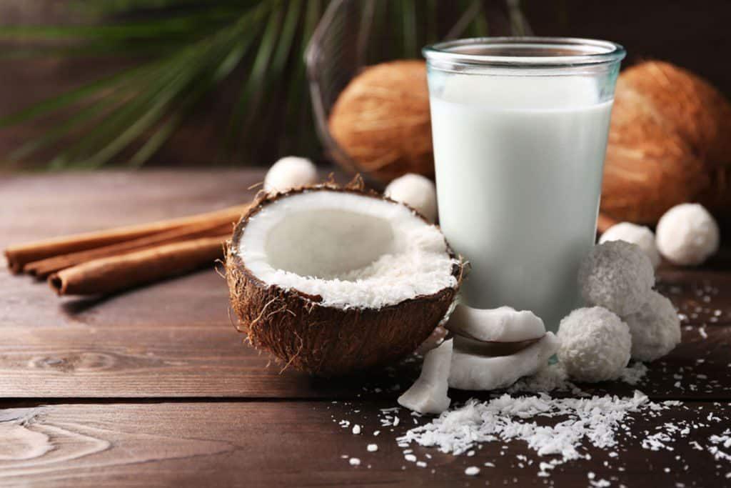 manfaat santan kelapa bagi kesehatan